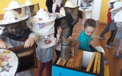 """Trwa zgłębianie tajników życia pszczół przez przedszkolaki w szkołach na obszarze LGD """"ZIELONE SIOŁO""""."""