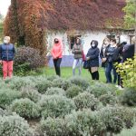 Warsztaty z Lawendą w Zagrodzie edukacyjnej Sielski Dom i Ogród