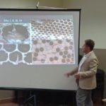 Szkolenie dla początkujących i już praktykujących pszczelarzy